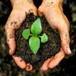 Lợi ích của việc cải tạo đất trong canh tác nông nghiệp