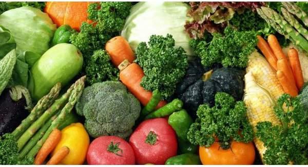Sản phẩm sạch của nông nghiệp hữu cơ
