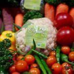 Nông nghiệp hữu cơ và nông nghiệp sạch GAP (VietGAP)