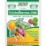 Xử lý phân chuồng bằng nấm đối kháng trichoderma giúp tăng 60% hiệu quả