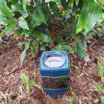 Khái niệm pH đất và tính chất của đất trồng thông qua chỉ số pH