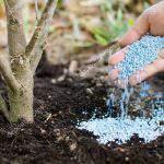 Vì sao lạm dụng phân hóa học khiến đất vườn thoái hóa ?