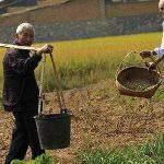 Kinh nghiệm cải tạo đất hoang của người Nhật