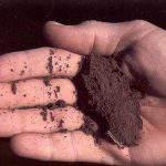 Cải tạo đất canh tác hiệu quả nhất