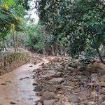 Tình trạng đất bị oi nước ở cây trồng và giải pháp khắc phục