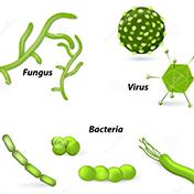 Chế phẩm trừ bệnh sinh học