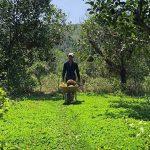 Hiểu đất trồng để có thể canh tác hiệu quả hơn